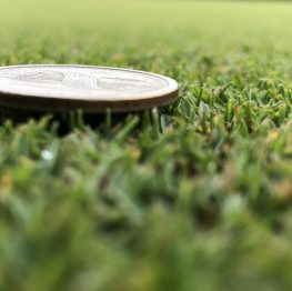 Dense turf supporting a quarter coin